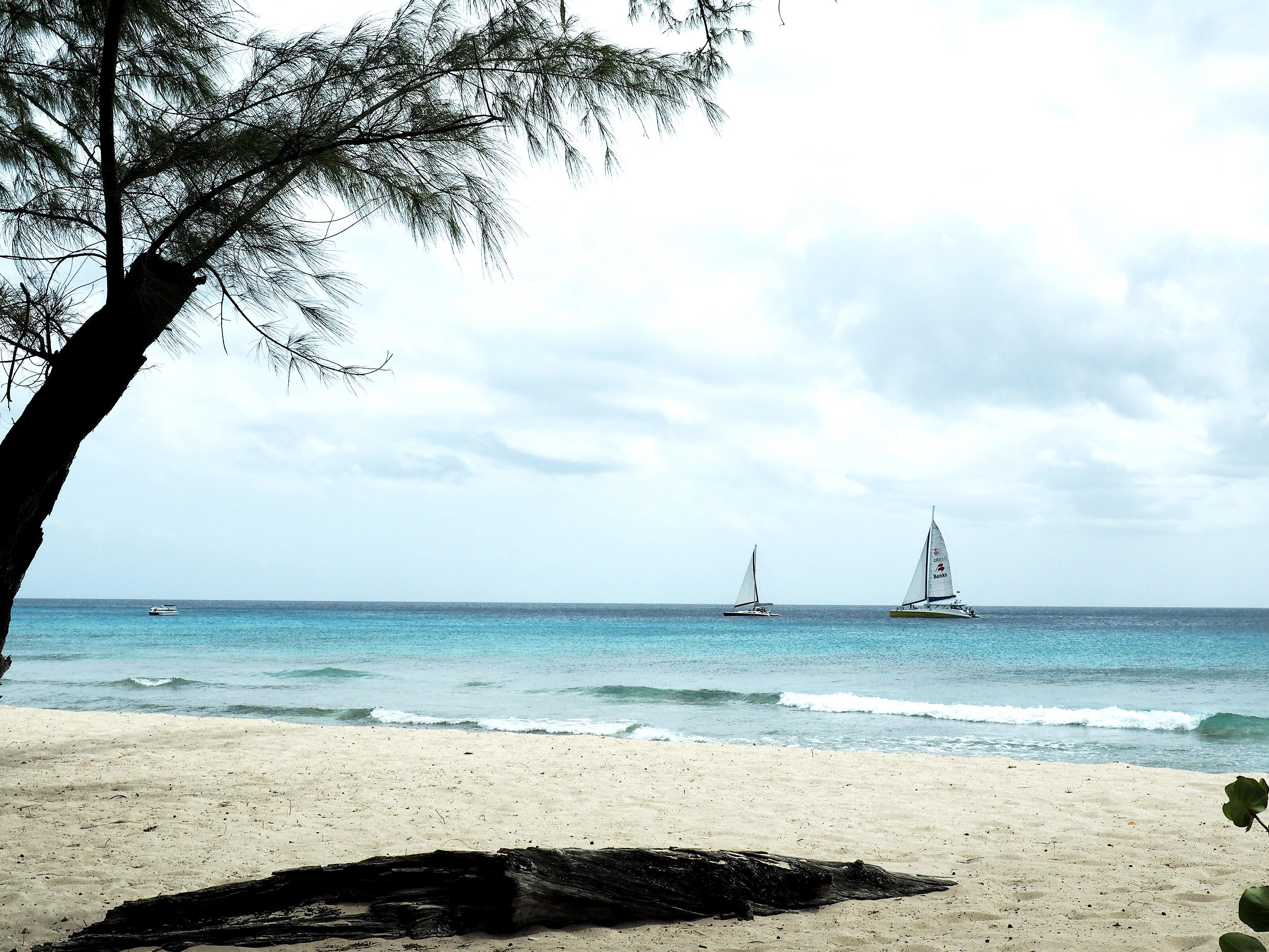 Tommeezjerry-Männerblog-Berlinblog-Fashionblog-Styleblog-Travelblog-Travel-Reiseblog-Reisen-Barbados-Karibik-Carribean-Summer-Sommer-Vacation-11