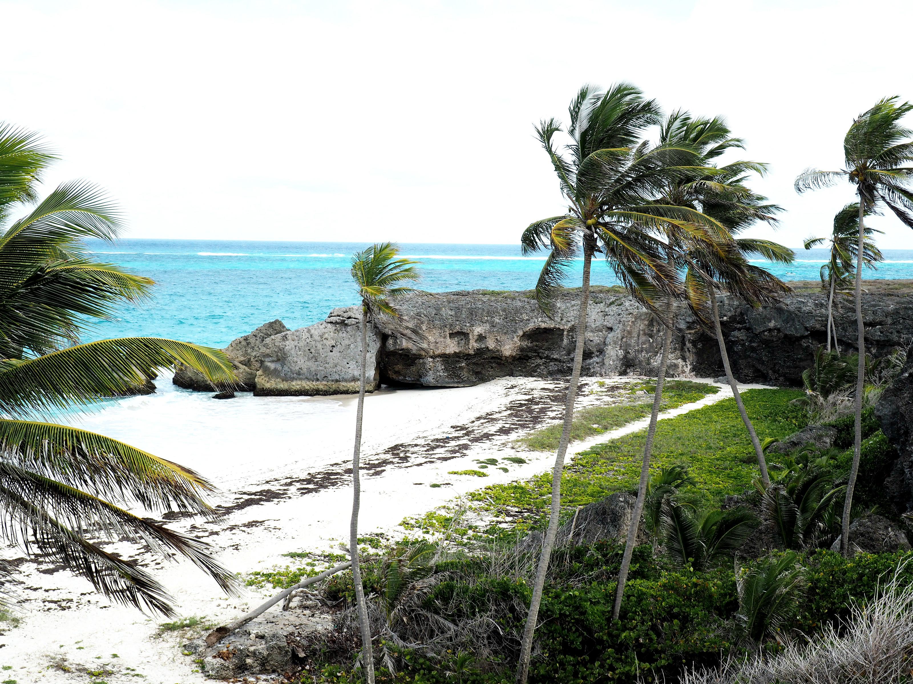 Tommeezjerry-Männerblog-Berlinblog-Fashionblog-Styleblog-Travelblog-Travel-Reiseblog-Reisen-Barbados-Karibik-Carribean-Summer-Sommer-Vacation-14