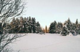 Tommeezjerry-Lifestyleblog-Fashionblog-Maennermodeblog-Maennerblog-Modeblog-Huawei-Mate-10-Pro-Travel-Photography-Finland-Winter-Winterwonderland-Nature-Snow-Ice