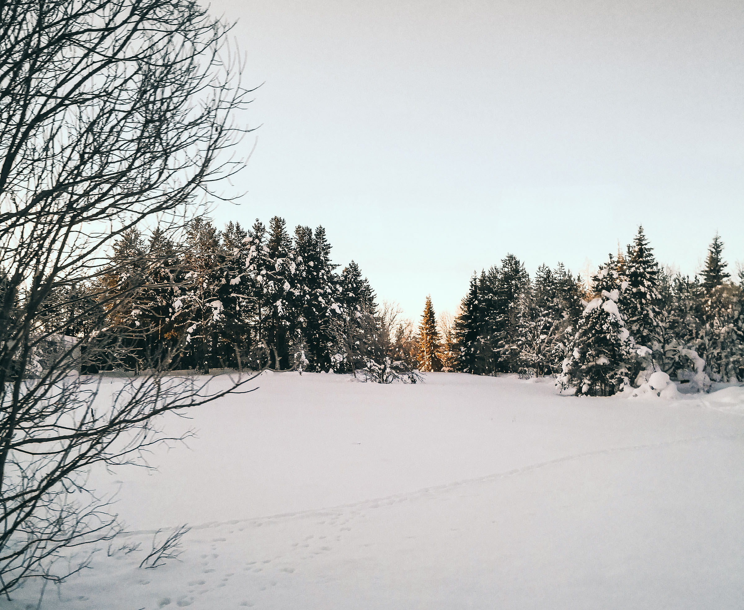 Tommeezjerry-Lifestyleblog-Fashionblog-Maennermodeblog-Maennerblog-Modeblog-Huawei-Mate-10-Pro-Travel-Photography-Finland-Winter-Winterwonderland-Nature-Snow-Ice